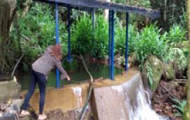 Agua A La Vereda